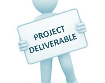 Deliverables versus Results